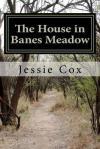 Banes Meadow